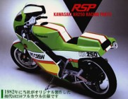 RSP/Pit Crew race-replica bodykit