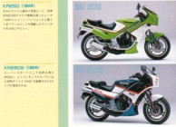 Scan from Japanese 'Lime Green History' Kawasaki book