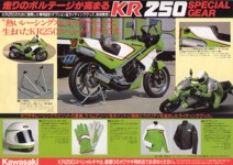 KR250 factory options brochure (look at those gloves !)